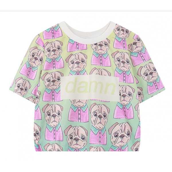 Green Rainbow Damn Dog Pug Harajuku Funky Cropped Short Sleeves Tops T Shirt